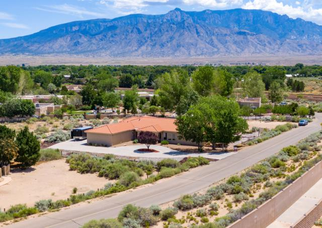 105 Calle Contenta, Corrales, NM 87048 (MLS #950915) :: Campbell & Campbell Real Estate Services