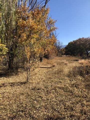 7406 Corrales Road, Corrales, NM 87048 (MLS #951109) :: Campbell & Campbell Real Estate Services