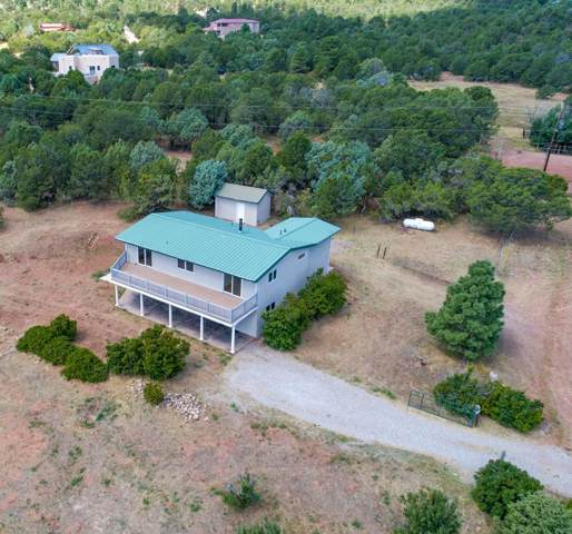 11 Sandia Haven Drive, Cedar Crest, NM 87008 (MLS #953672) :: Campbell & Campbell Real Estate Services