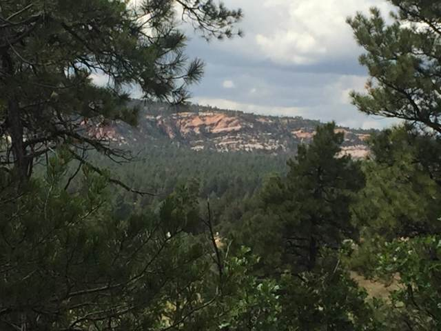29 Roadrunner Road, Ramah, NM 87321 (MLS #953952) :: Silesha & Company