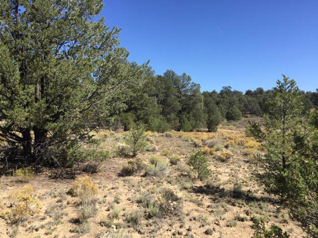 Lot 507 Tin Can Alley Rd-Candy Kitchen, Ramah, NM 87321 (MLS #954957) :: Silesha & Company
