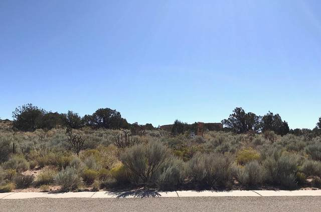 Rooster Point Ct NE, Rio Rancho, NM 87144 (MLS #955996) :: Berkshire Hathaway HomeServices Santa Fe Real Estate
