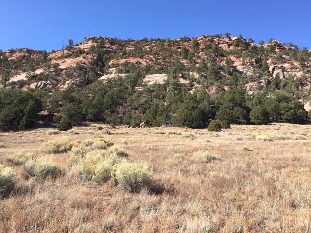 Lot 3 Box S Ranch Road, Ramah, NM 87321 (MLS #957022) :: Keller Williams Realty