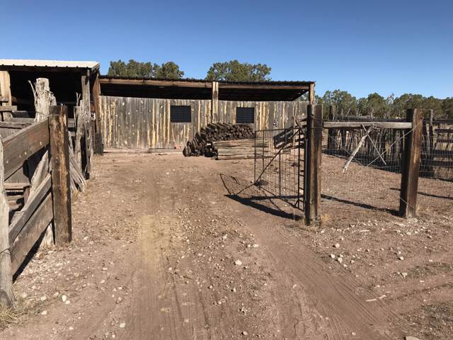 Forest Rd 422, Belen, NM 87002 (MLS #957596) :: Campbell & Campbell Real Estate Services