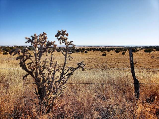 V Hill Road, Moriarty, NM 87035 (MLS #958362) :: Campbell & Campbell Real Estate Services