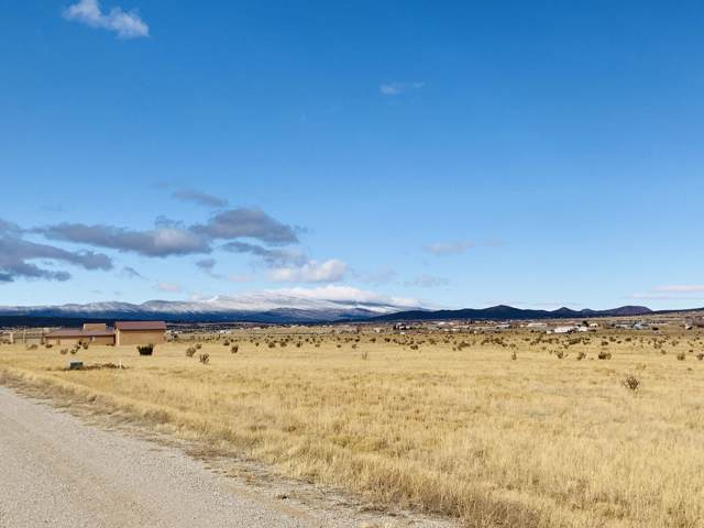 110 High Meadow Loop, Edgewood, NM 87015 (MLS #958825) :: Campbell & Campbell Real Estate Services