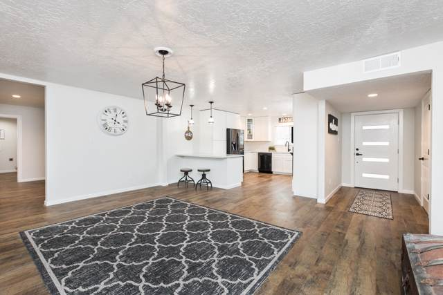 10704 Calle De Celina NW, Corrales, NM 87048 (MLS #960687) :: Campbell & Campbell Real Estate Services