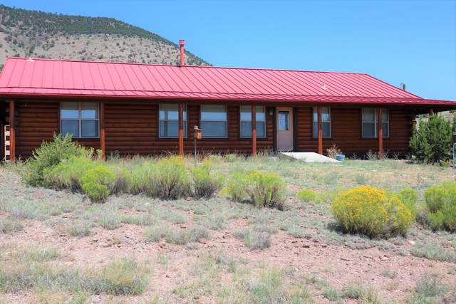53 Hillside Circle, Datil, NM 87821 (MLS #960844) :: The Bigelow Team / Red Fox Realty