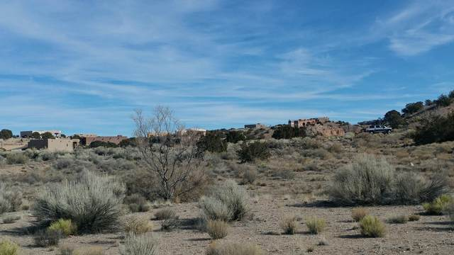 Ocate Court, Placitas, NM 87043 (MLS #962038) :: Campbell & Campbell Real Estate Services