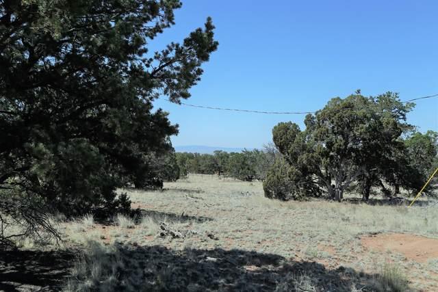 50 Raven Loop, Datil, NM 87821 (MLS #962366) :: The Buchman Group