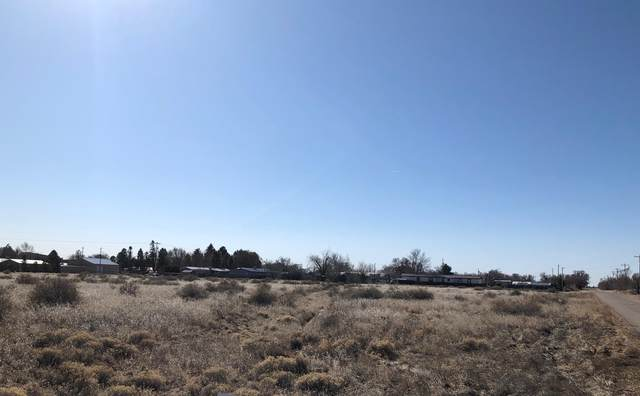Fourth Street, Moriarty, NM 87035 (MLS #962874) :: The Buchman Group