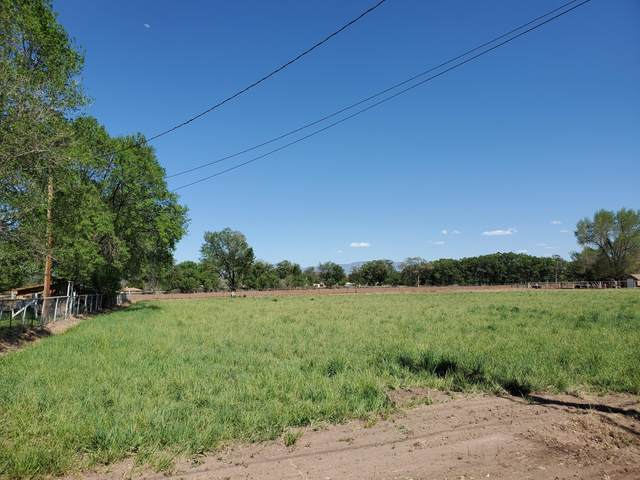 Country Lane, Bosque Farms, NM 87068 (MLS #963132) :: Sandi Pressley Team