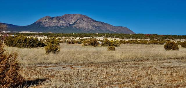 34 Baugus Lane, Edgewood, NM 87015 (MLS #963295) :: The Bigelow Team / Red Fox Realty