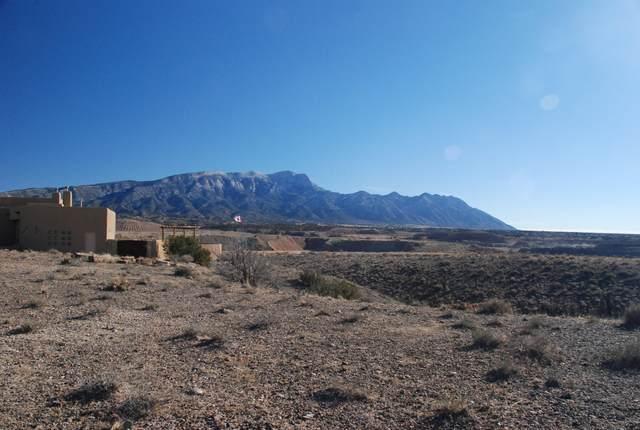 7 Third Mesa Ct, Placitas, NM 87043 (MLS #963668) :: The Bigelow Team / Red Fox Realty