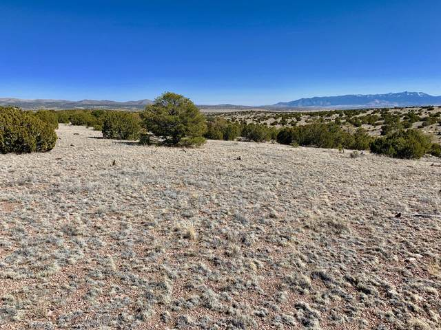 168 Pinon Springs Ranches, Magdalena, NM 87825 (MLS #963796) :: Keller Williams Realty