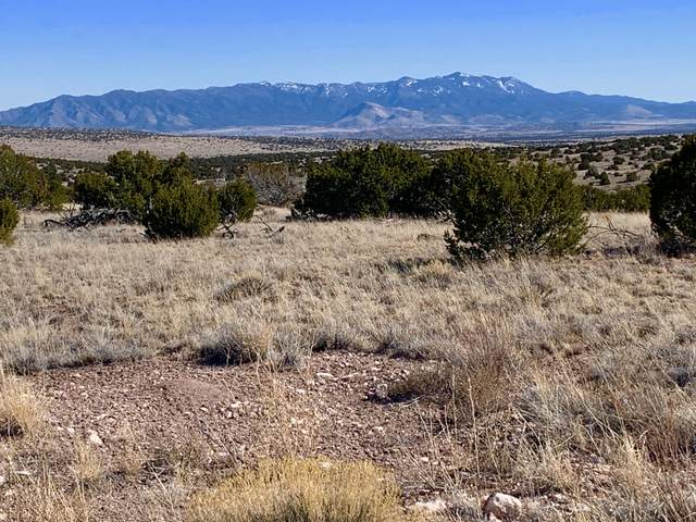 174 Pinon Springs Ranch, Magdalena, NM 87825 (MLS #963801) :: The Buchman Group