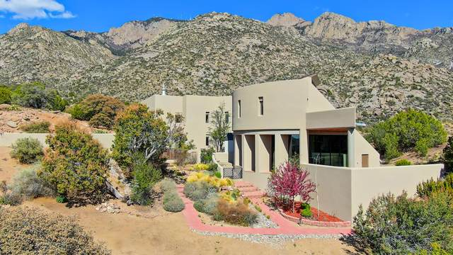 250 Spring Creek Place NE, Albuquerque, NM 87122 (MLS #964123) :: The Buchman Group