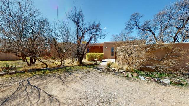 1816 Paragon Ct NW, Albuquerque, NM 87107 (MLS #964193) :: Sandi Pressley Team
