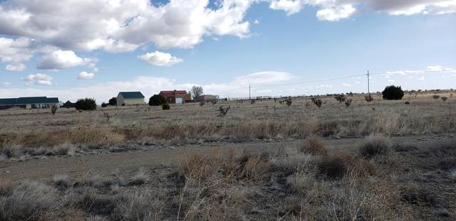 5 Raven Court, Edgewood, NM 87015 (MLS #965293) :: Campbell & Campbell Real Estate Services