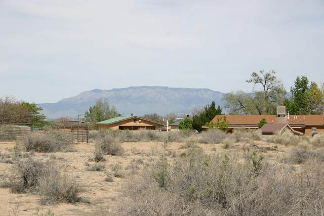 Pajarito (Ld) Road SW, Albuquerque, NM 87121 (MLS #965497) :: The Buchman Group
