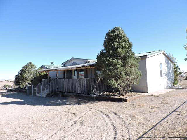 11 Silver Maple Avenue, Moriarty, NM 87035 (MLS #965744) :: The Bigelow Team / Red Fox Realty