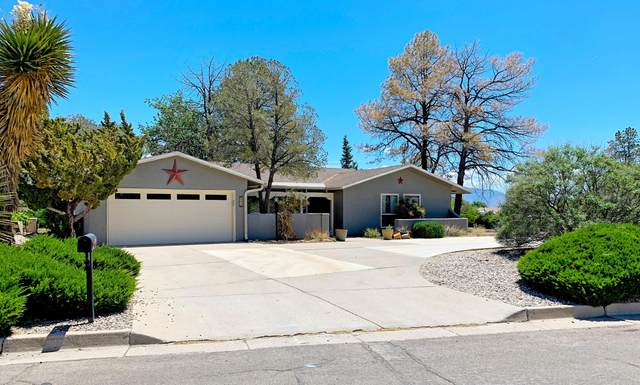 502 Ashberry Court SE, Rio Rancho, NM 87124 (MLS #967336) :: Campbell & Campbell Real Estate Services