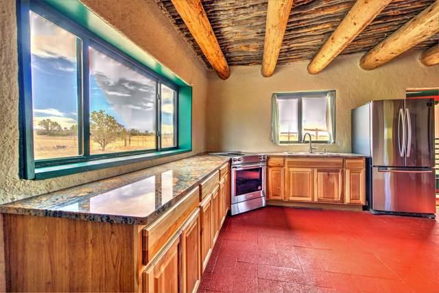 104 New Mexico State 496 Road, La Jara, NM 87027 (MLS #967427) :: The Buchman Group