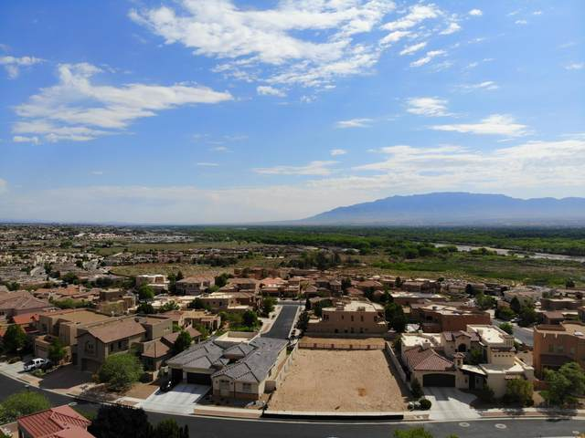 4312 Willow View Lane NW, Albuquerque, NM 87120 (MLS #968162) :: The Bigelow Team / Red Fox Realty