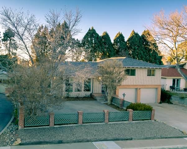 2515 Schell Court NE, Albuquerque, NM 87106 (MLS #968342) :: The Buchman Group