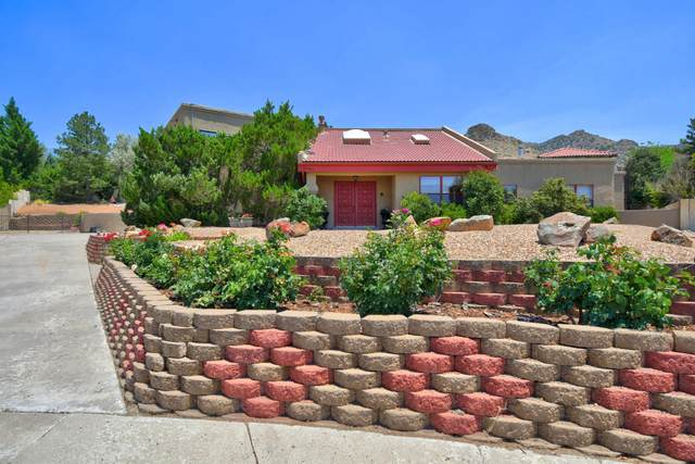 14426 Alene Court NE, Albuquerque, NM 87123 (MLS #970798) :: The Bigelow Team / Red Fox Realty
