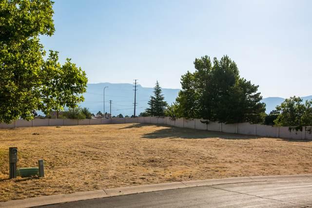 Masters Drive NE, Albuquerque, NM 87111 (MLS #970867) :: HergGroup Albuquerque
