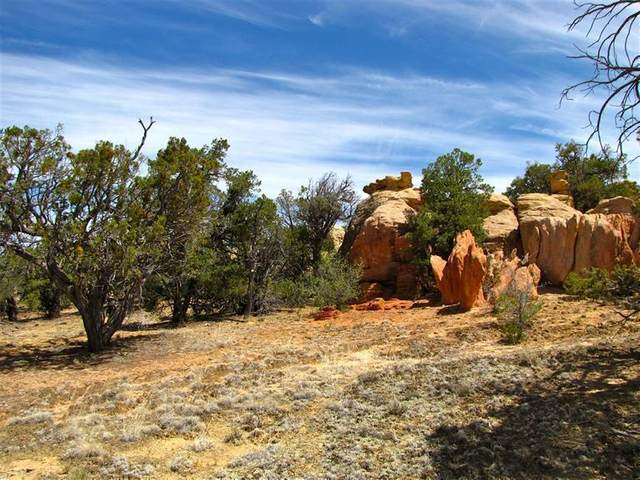 Lots 404+ Raven&Shadetree -Candy Kitchen, Ramah, NM 87321 (MLS #970900) :: The Bigelow Team / Red Fox Realty
