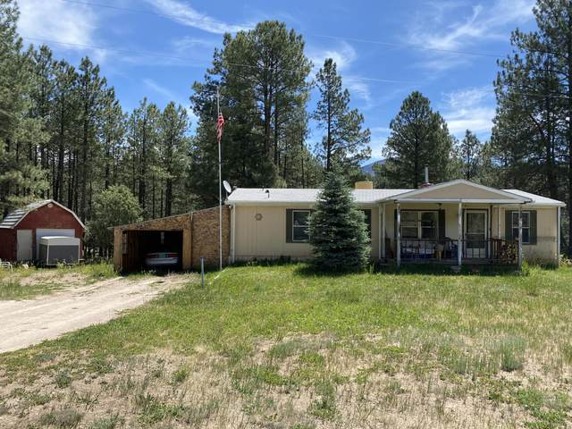 94 Escondido, Jemez Springs, NM 87025 (MLS #970933) :: The Buchman Group