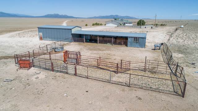 214 Simmons Road, Stanley, NM 87056 (MLS #971716) :: Campbell & Campbell Real Estate Services
