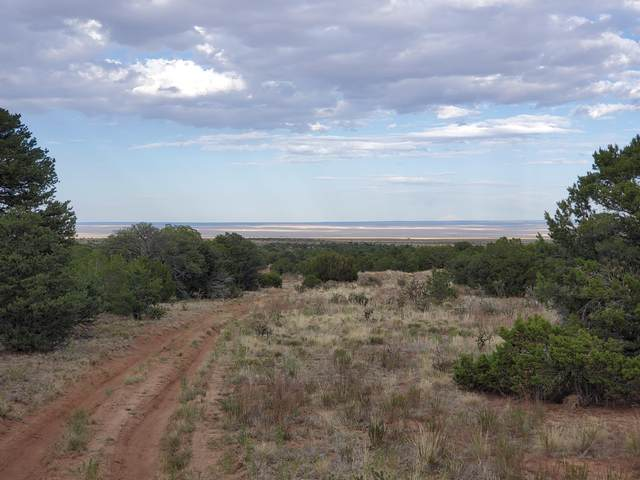 1229B Nm 344, Stanley, NM 87056 (MLS #971853) :: Campbell & Campbell Real Estate Services
