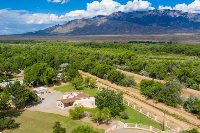 591 E Ella Drive, Corrales, NM 87048 (MLS #971859) :: Campbell & Campbell Real Estate Services