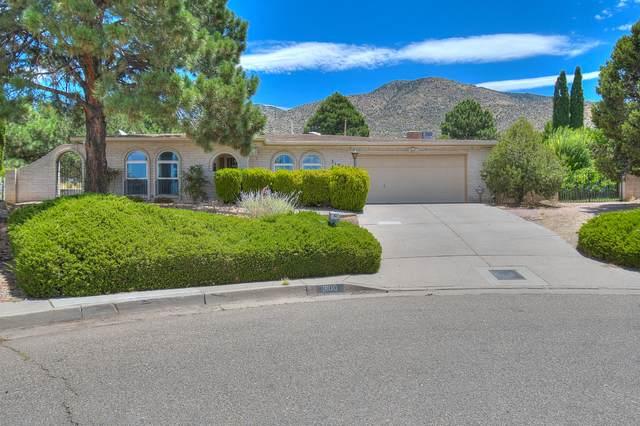 3100 Palo Alto Drive NE, Albuquerque, NM 87111 (MLS #972015) :: Berkshire Hathaway HomeServices Santa Fe Real Estate