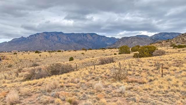 13608 Barranca Vista Court NE, Albuquerque, NM 87111 (MLS #972274) :: Keller Williams Realty