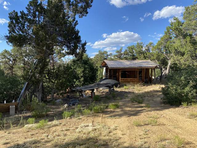 66 Easy Living - Candy Kitchen, Ramah, NM 87321 (MLS #972686) :: The Bigelow Team / Red Fox Realty