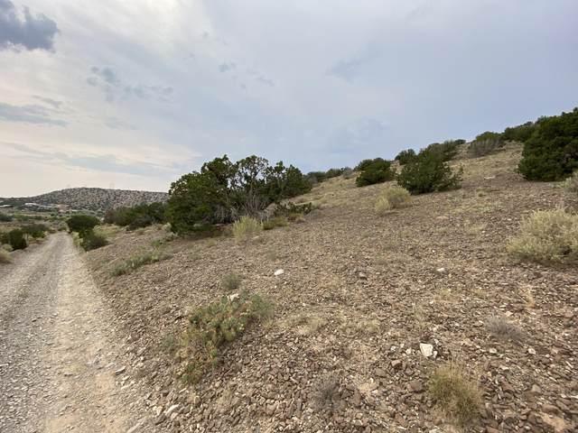 Lot B2, Charolette Lane, Placitas, NM 87043 (MLS #975179) :: Sandi Pressley Team