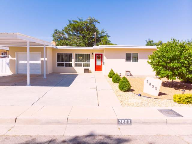 3800 Palo Court NE, Albuquerque, NM 87110 (MLS #976805) :: Berkshire Hathaway HomeServices Santa Fe Real Estate