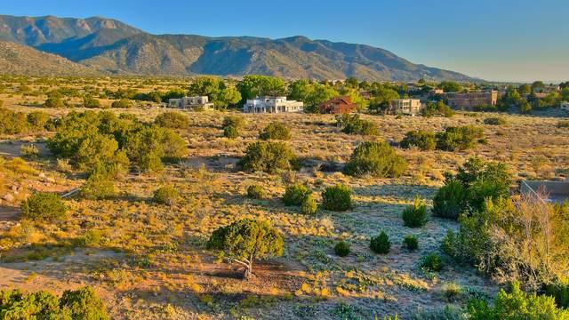 1014 Tramway Lane NE, Albuquerque, NM 87122 (MLS #976834) :: Keller Williams Realty