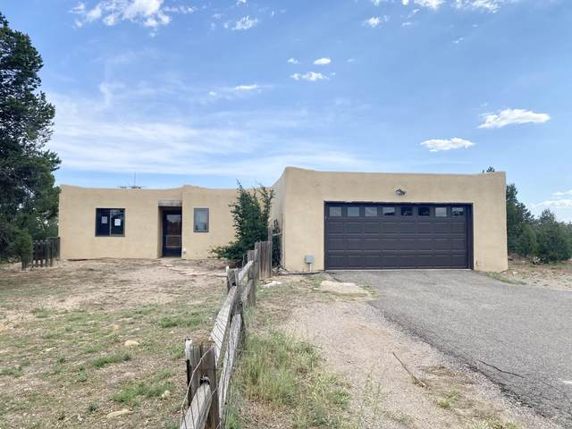 168 Pinon Trail, Cedar Crest, NM 87008 (MLS #976933) :: Sandi Pressley Team