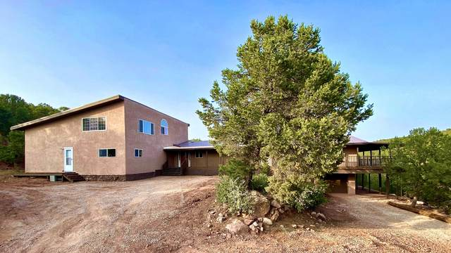 34 Jon Kitsch Road, Tijeras, NM 87059 (MLS #977372) :: The Bigelow Team / Red Fox Realty