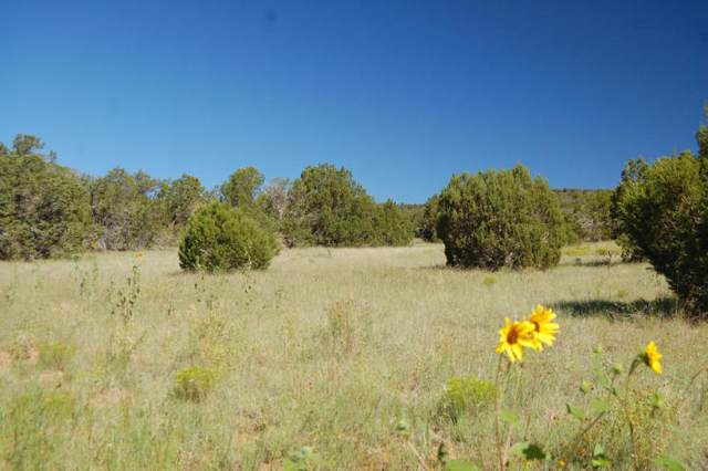 Manzano Morning Lot 22, Manzano, NM 87016 (MLS #977492) :: The Buchman Group