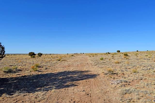 Lot 43, 44 Suski Way, Los Lunas, NM 87031 (MLS #977701) :: Campbell & Campbell Real Estate Services