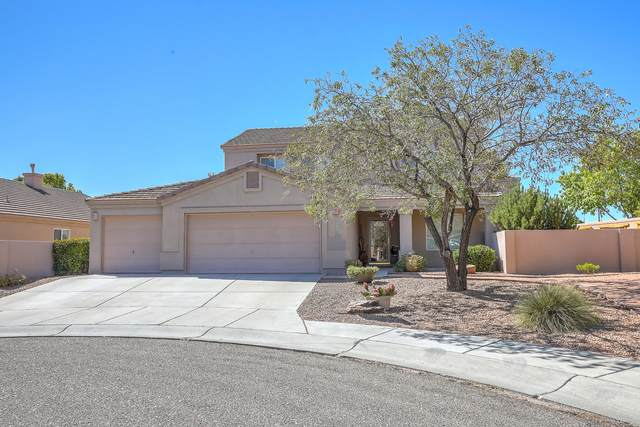 3931 Desert Sage Court NW, Albuquerque, NM 87120 (MLS #978818) :: The Bigelow Team / Red Fox Realty