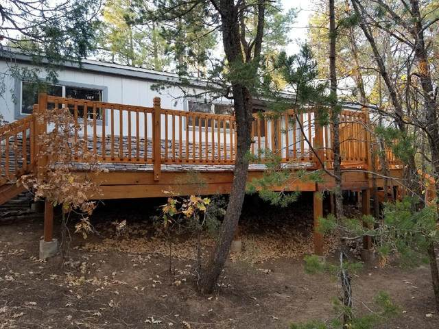5 Big Dipper Road, Tijeras, NM 87059 (MLS #979857) :: Campbell & Campbell Real Estate Services