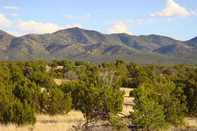 14 Stagecoach Trail, Sandia Park, NM 87047 (MLS #980393) :: Campbell & Campbell Real Estate Services