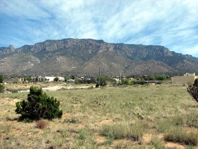 12420 San Bernardino Drive NE, Albuquerque, NM 87122 (MLS #981436) :: The Buchman Group